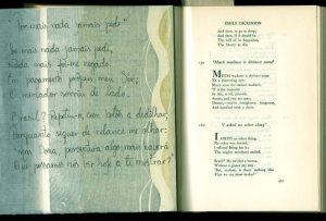 """tradução de um poema em inglês chamado """"I asked no other thing"""" by Emily Dickinson. português"""
